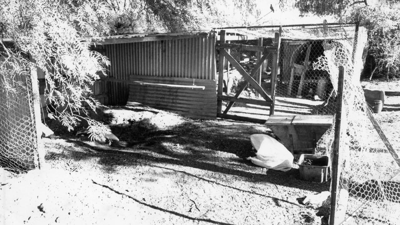 The chook shed where Domenic Marafiote's body was found.