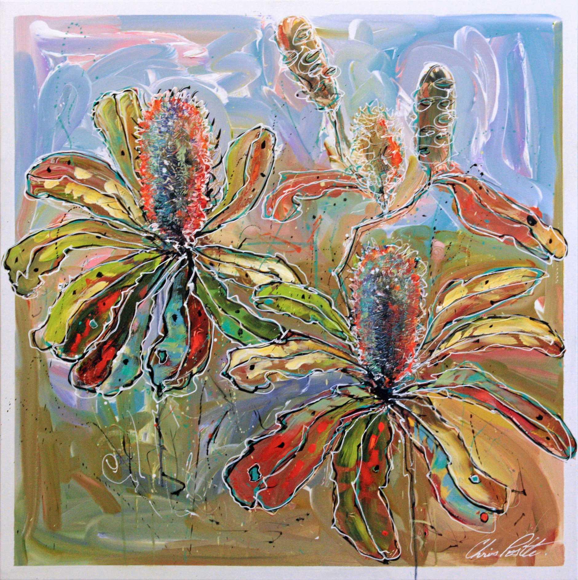 Montville Art Gallery has Chris Postle's Banksia Hues.