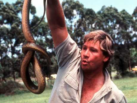 Steve Irwin had a love of reptiles from a young age.
