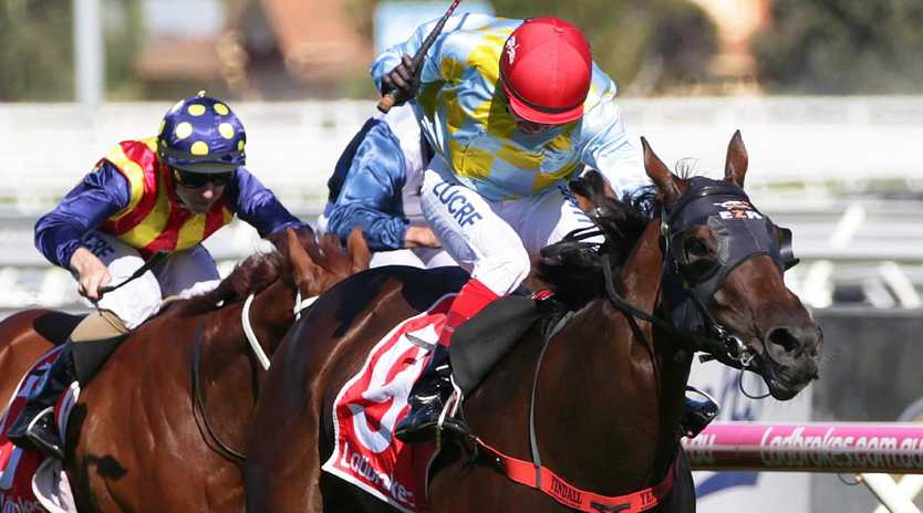 Oakleigh Plate winner Booker gave sire Written Tycoon another Group 1. Picture: AAP