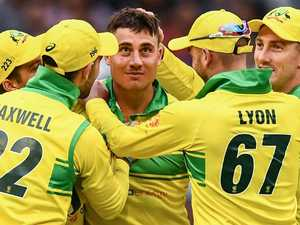 Game-breaker Stoinis looms large in India's plans