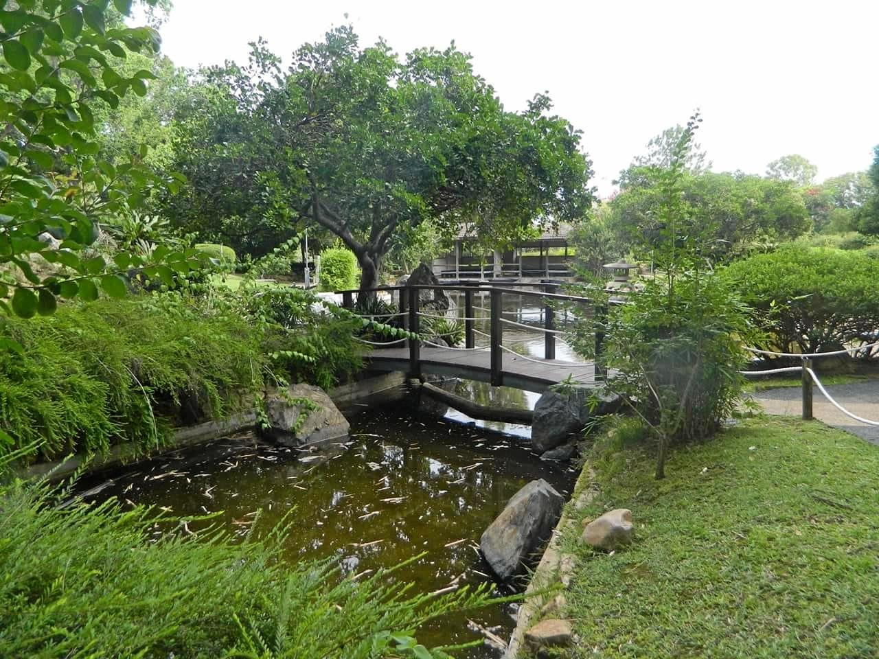 Sharon Casey shared an image of the Japanese Gardens at the Rockhampton Botanic Gardens.