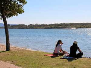 Noosa River biodiversity in big trouble: report