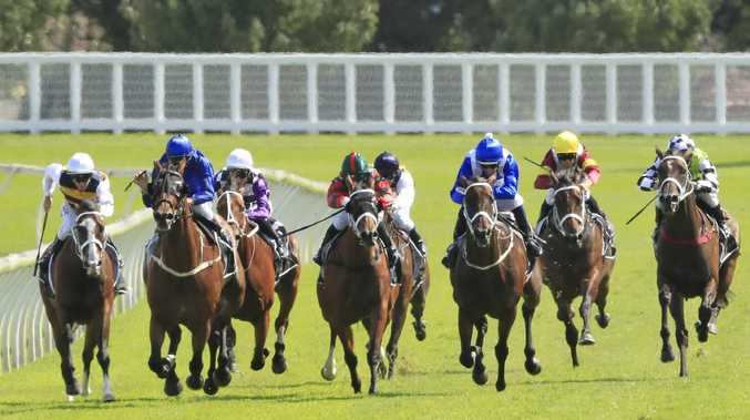 Winx wins the Apollo Stakes in her last outing. Pic: Getty Images