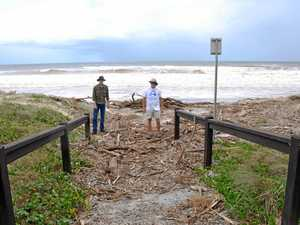 Oma sucks Cooloola's only turtle eggs out to sea