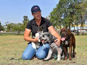 Community unleashes opinion on dog park