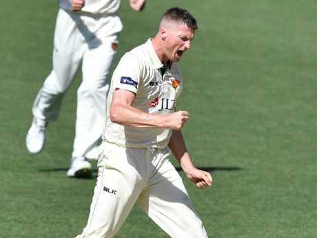 Tasmania's Jackson Bird celebrates taking the wicket of South Australia's Jake Lehmann at Adelaide Oval on Monday. Picture: AAP