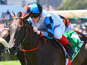 Triple threat: Hayes amped up for Guineas
