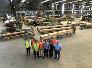 Nationals invest $40m in NSW's timber industry