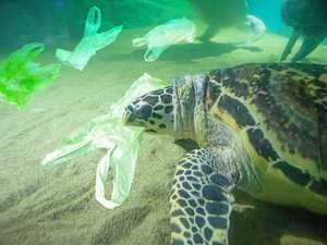 Use these tips to live better with less plastic