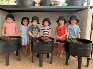 Kindy kids dig deep for worm farm project