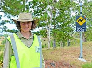 Follow the sign, slow down, save a koala