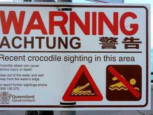 Possible croc sighting near Cannonvale Beach