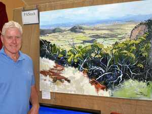 Cartoonist takes the win at Bell Art Exhibition