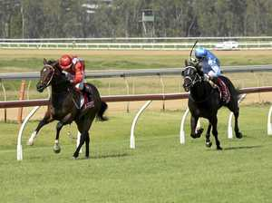 CQ horse will be one to watch at next Thursday race