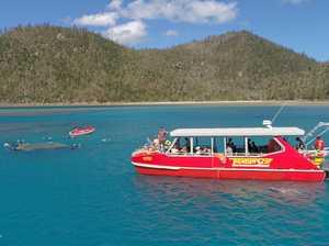Whitsundays tourism operators strike gold