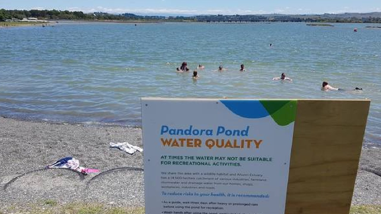 Pandora Pond was officially declared safe for swimming again in January this year.