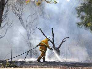 Crew on scene at vegetation fire near city