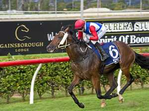 Soxagon kicks favourite backers off in emphatic style