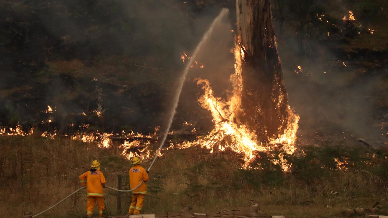 Firefighters on the ground in Tynong North. Picture: Alex Coppel