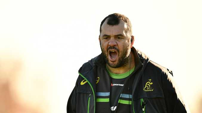 Michael Cheika is under pressure heading into a massive World Cup year for the Wallabies. Picture: Getty