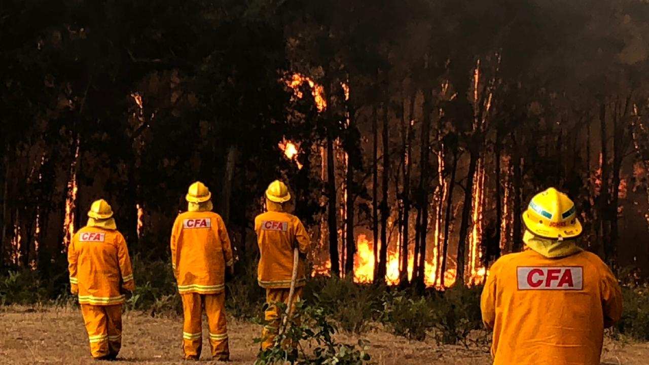 Firefighters at Bunyip State Forest are working to bring the blaze under control. Picture: Alex Coppel