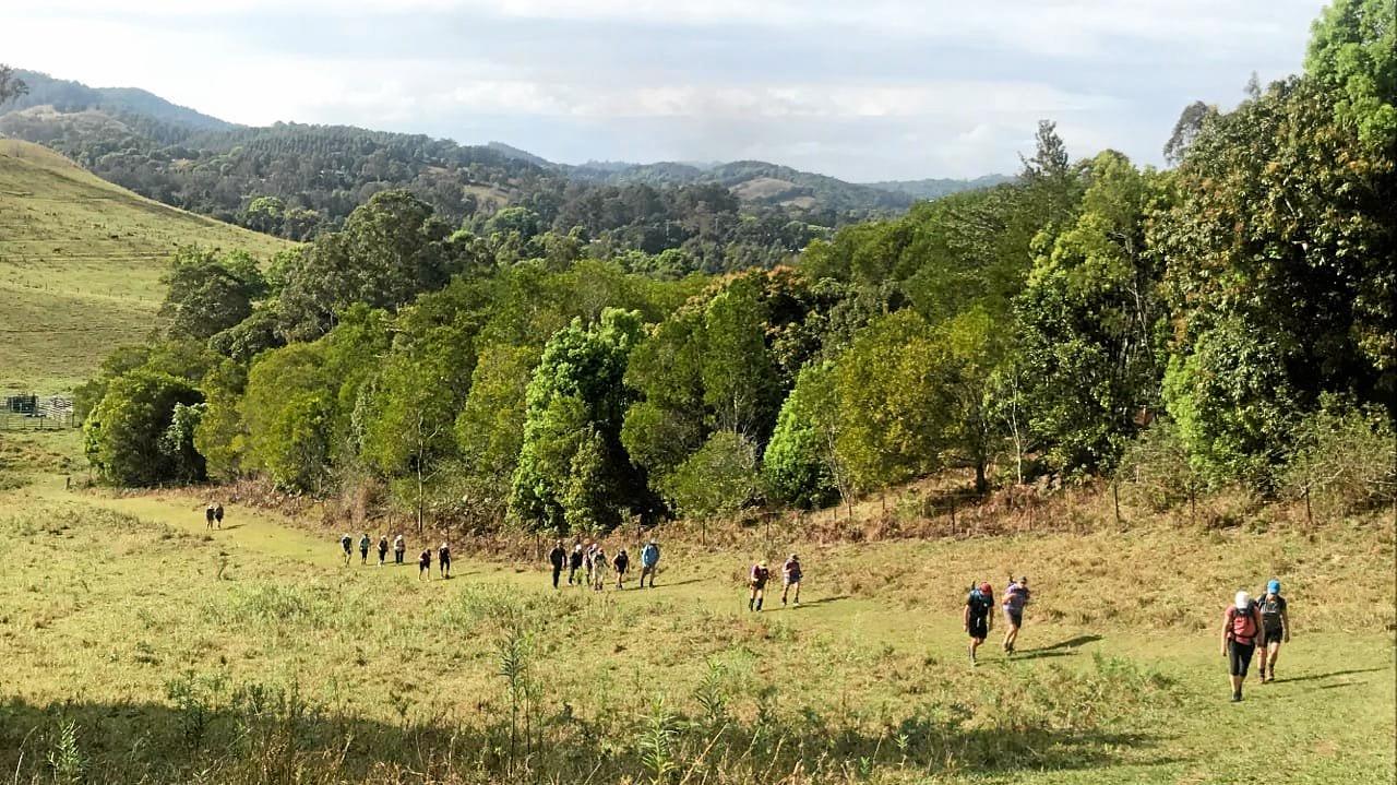 A procession of walkers on Steamy Hill near Kin Kin.