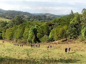 Great Noosa Trail Walk tickets already half-sold