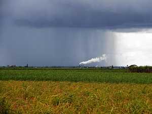 Hopes and pain: Bundy rain on way, but so to is El Nino