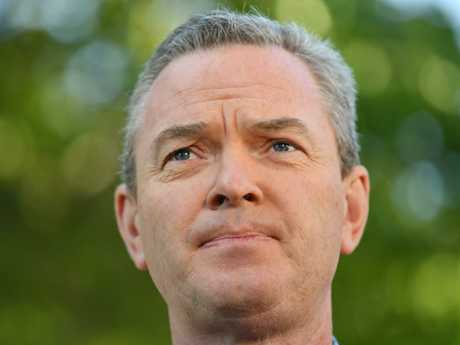 According to the Pyne Bishop didn't have enough votes to topple Peter Dutton.
