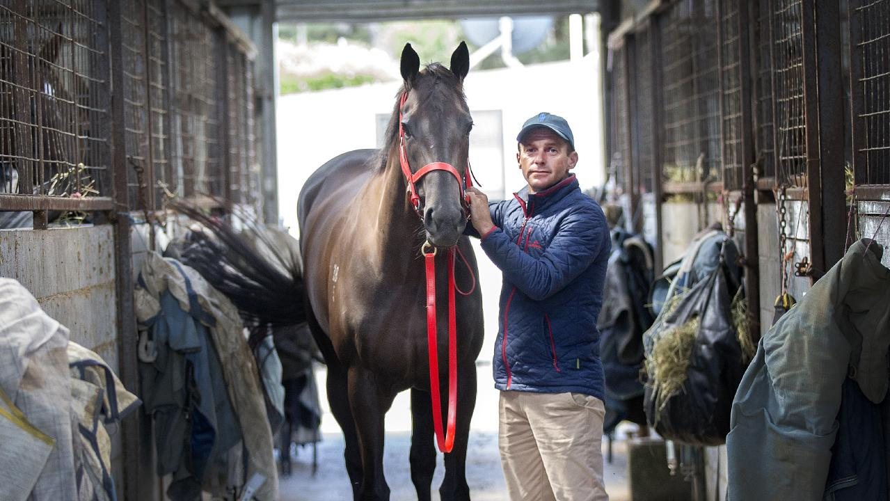 Trainer Adam Trinder and Mystic Journey at Spreyton. Picture: Chris Kidd