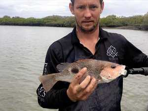 CATCHES OF THE WEEK: Weekend showers did not deter anglers