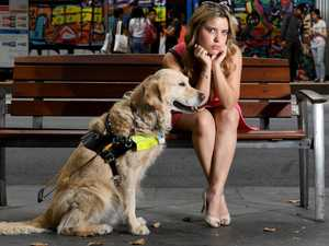 Blind singer and guide dog refused Uber ride