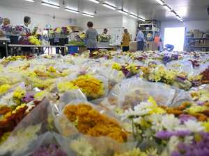 Make mum's day and volunteer to pick flowers