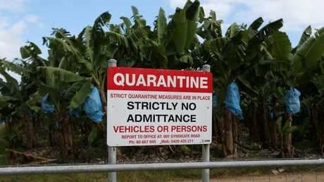 Quarantine signs at a Tully property. PICTURE: STEWART McLEAN