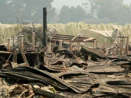 Jinks Creek Winery in Tonimbuk was destroyed after a bushfire engulfed the Bunyip state forest in Victoria. Stuart McEvoy/The Australian