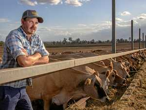 Farmers warn the sun is setting on Australian dairy