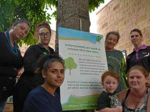 Support grows for threatened flame tree