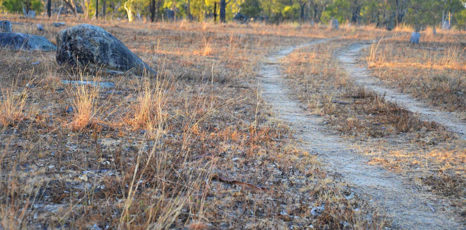 The dry grass at Greymare during one of the worst droughts in history.