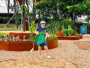 Community garden for all to share in highly-sought estate
