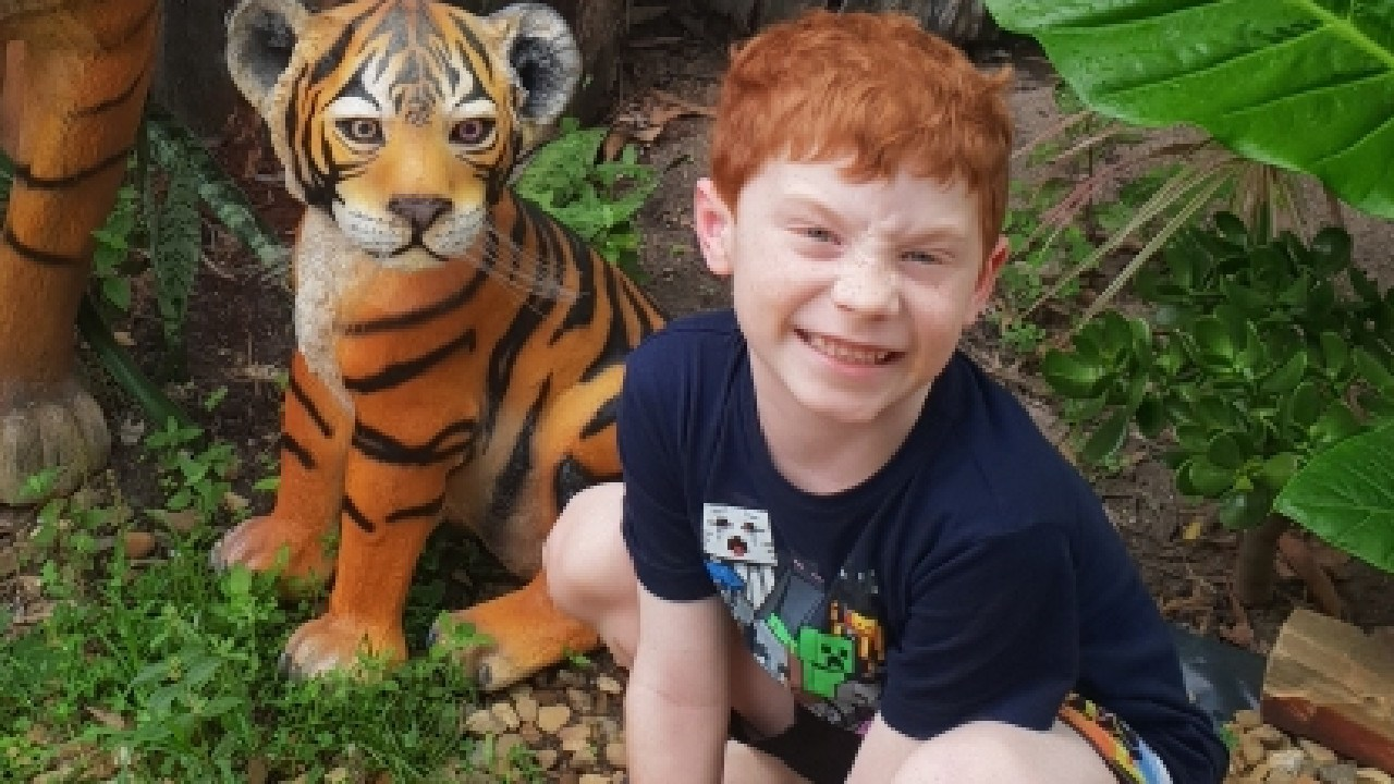 Michael Schipanski, 6, was bitten on Fraser Island in the second dingo attack in as many months.