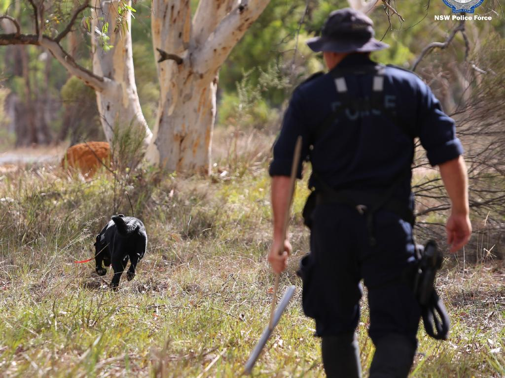 Investigators have used police dogs and helicopters in the search, which continues today. Picture: NSW Police