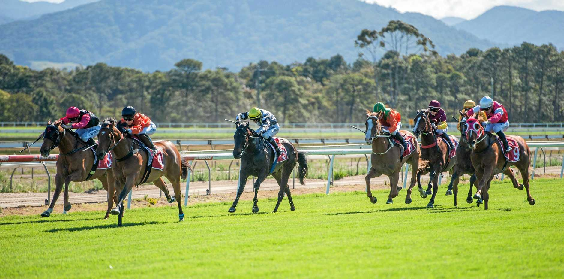DOWN THE STRAIGHT: Coffs Harbour Racing Club is one of the most picturesque tracks in the country.