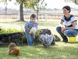Business thrives after crisis hits farming family hard