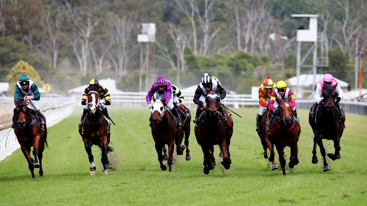 The straight of the Ipswich track. Trainers say the track is buggered.. Pics Tara Croser.