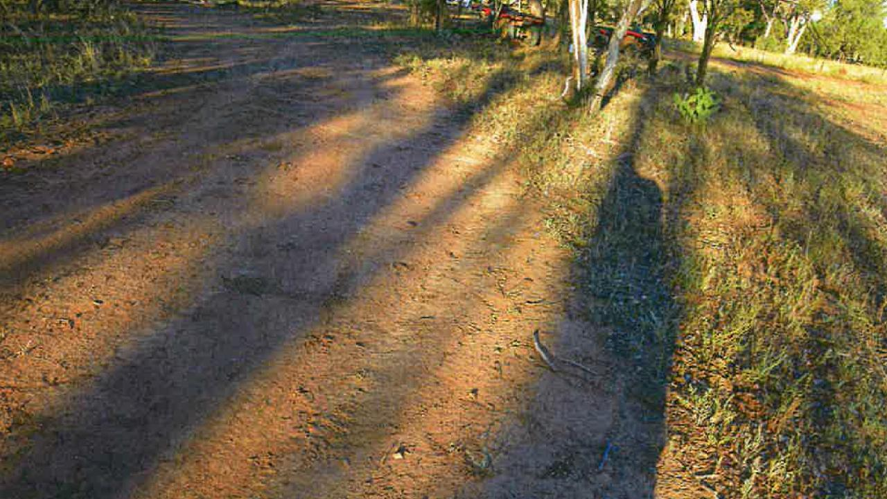 Tyre marks on dirt track at scene Picture: NSW Police
