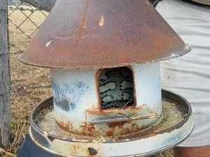Bird feeder feeds more than just birds