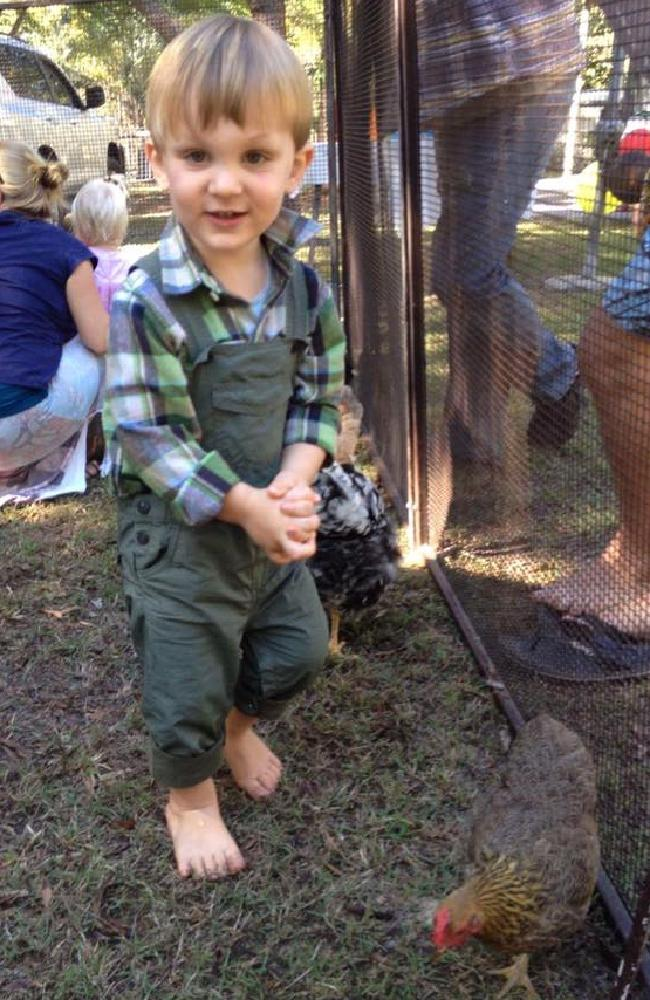 Eli Campbell was bitten by a coastal taipan at his family's Agnes Waters home in September 2016.