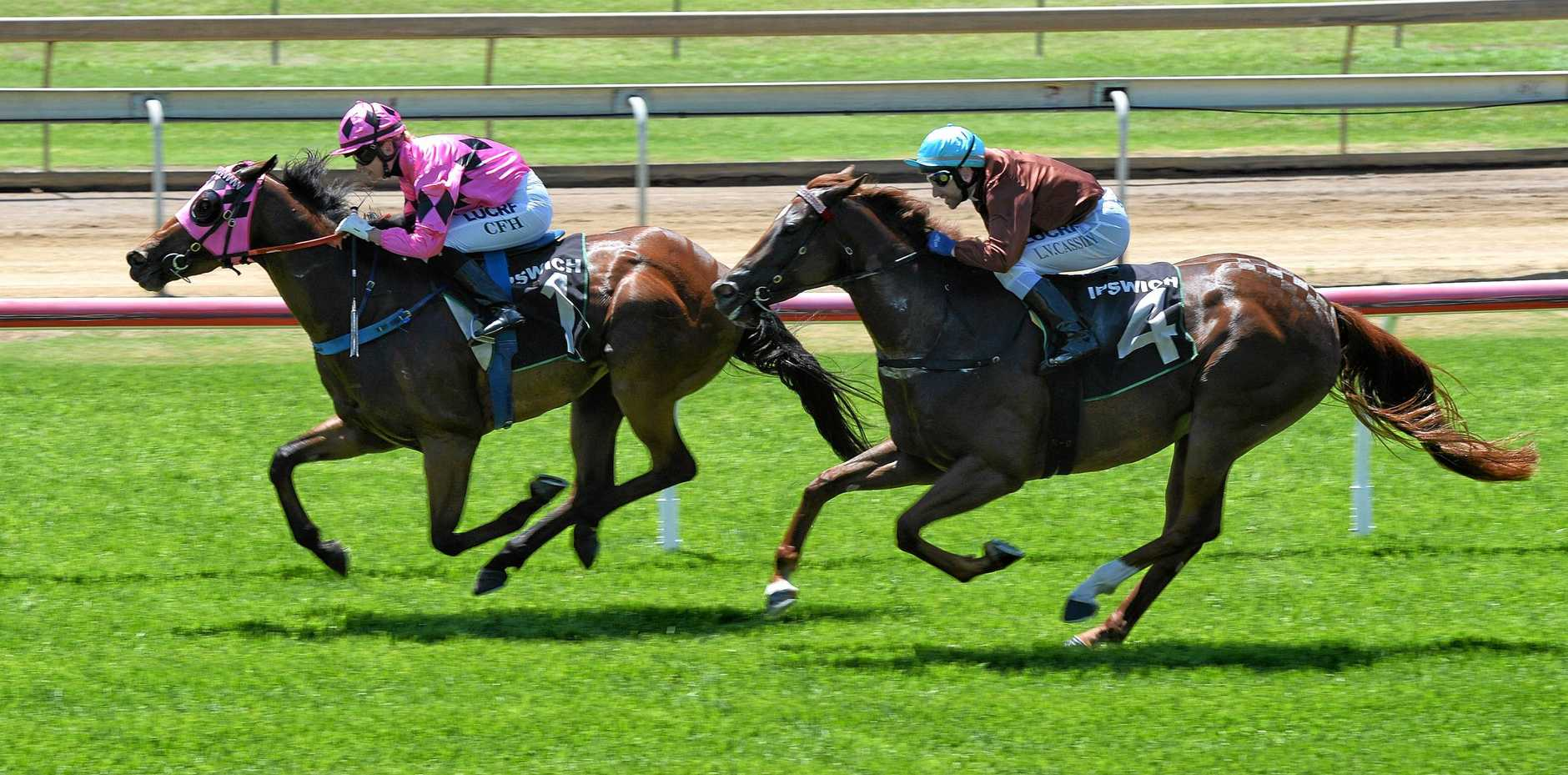 Pretty Ricky wins the Real Property Legal Maiden at Ipswich Racetrack on Friday.