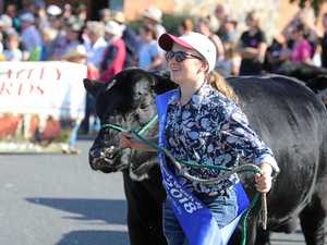 Countdown to 'bigger and better' Beef Week kicks off
